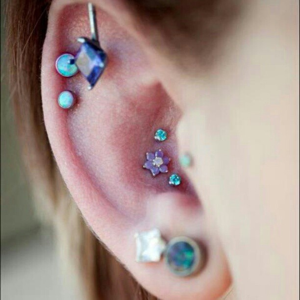 Purple And Blue Conch Piercing Fmag Com