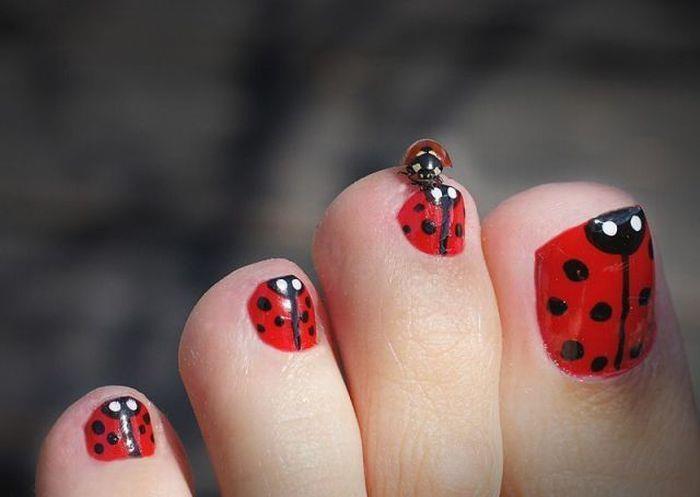 Ladybug Cute Toe Nail Design Fmag